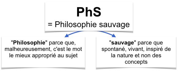 schema-PhS